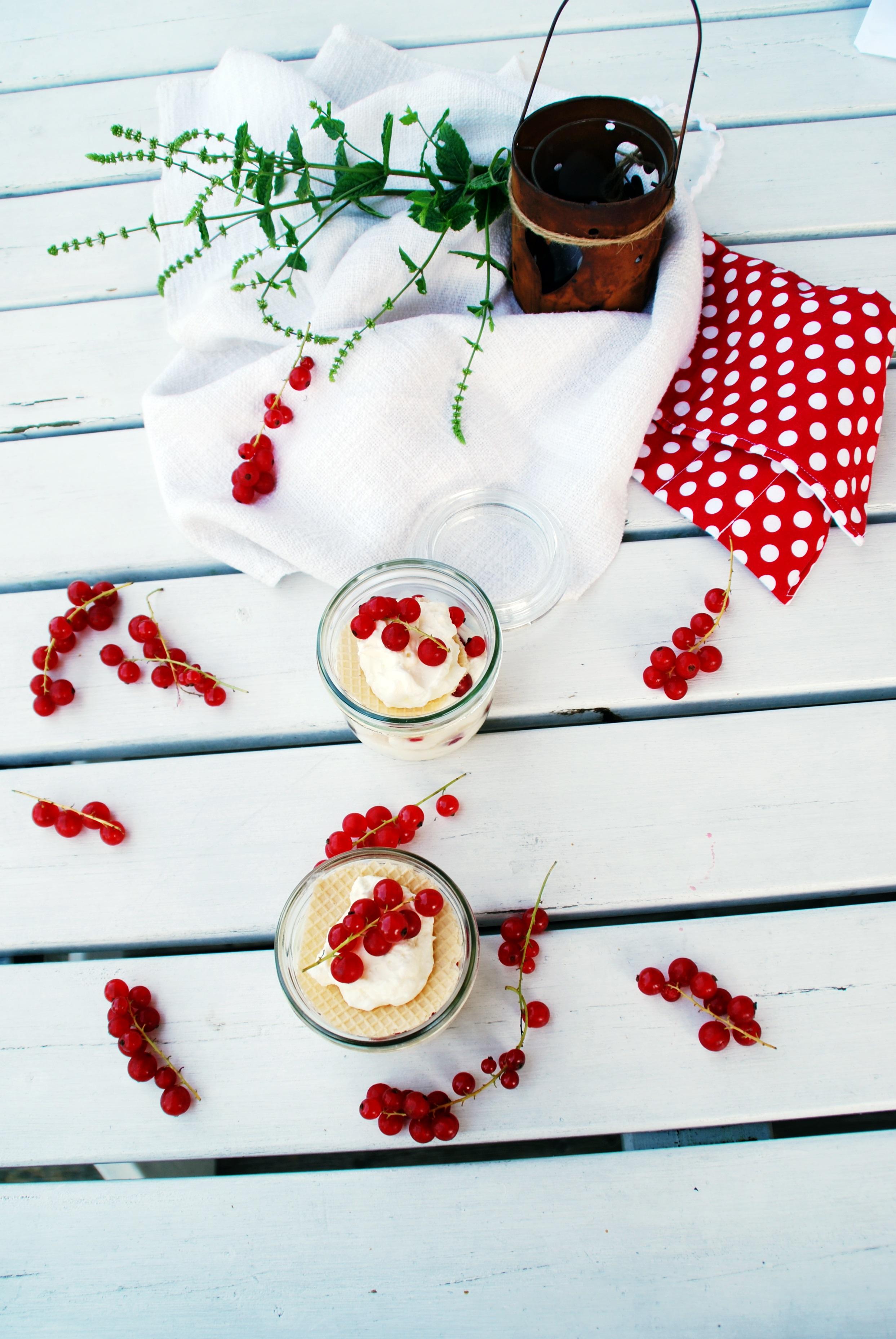 Ribisel-Creme-Dessert